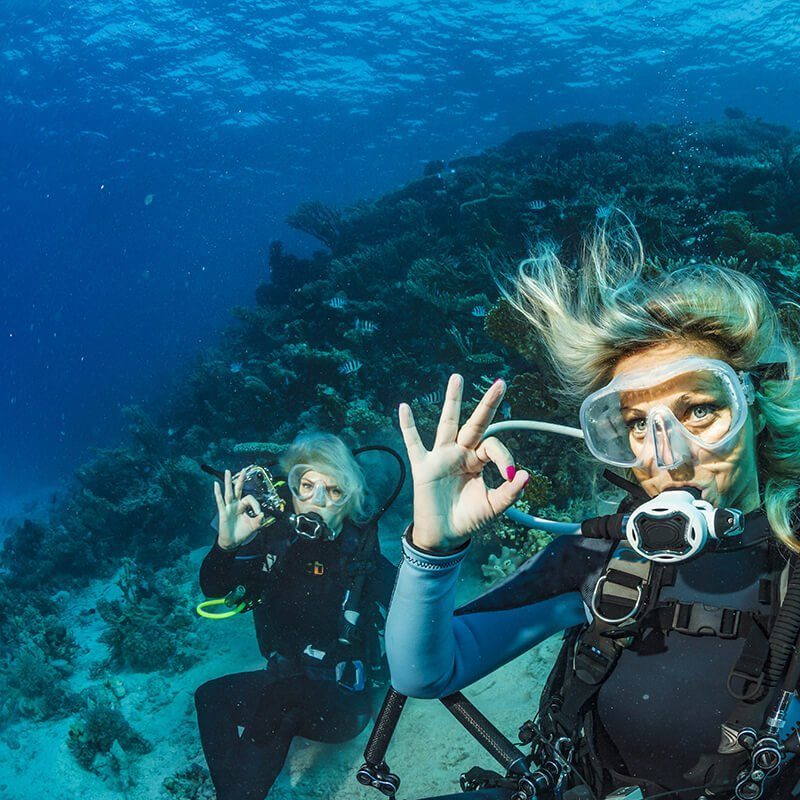 Best Weather For Diving in Aruba